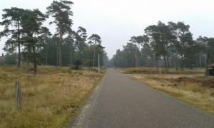 Mooie wegen op de Veluwe