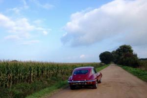 Jaguar E-Type aan de rand van een maïsveld in de buurt van Nederhemert